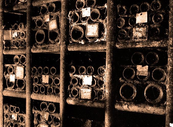 <p>La Vinothèque conserve les millésimes pour la postérité: 24 bouteilles, 6 magnums et 3 jéroboams de Mouton Rothschild y sont déposés chaque année. La plus ancienne bouteille étant un millésime 1859.</p>