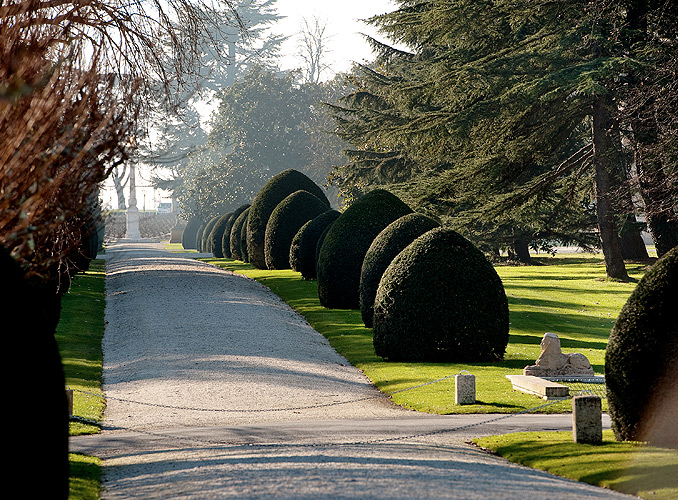 <p>L'allée d'ifs menant à l'obélisque de Château Mouton Rothschild.</p>