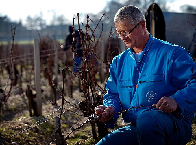 <p>通常,这些酿造木桐酒的男人女人们,都是世代在此工作,他们传承着祖先的经验,并采用现代技术加以发扬光大。</p>