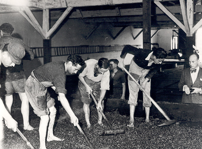 <p>Château Mouton Rothschild, year 1930 : Baron Philippe de Rothschild attending the grape crushing.</p>