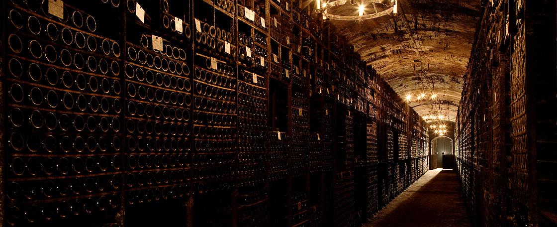 木桐堡的酒窖里,有一个存酒无数的大厅和一个展示中心。前者储藏着大约120 000瓶酒,都是木桐堡与波尔多其它名庄交换来的好酒。